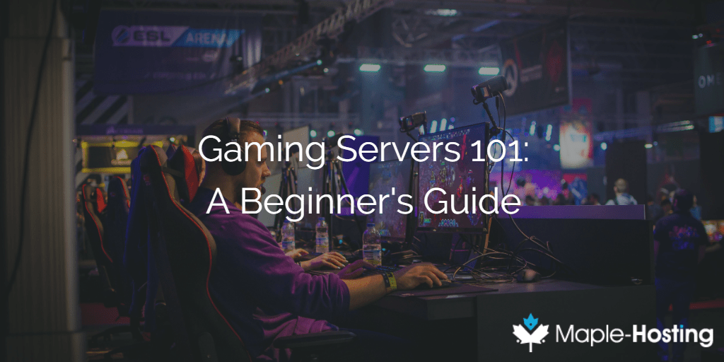 Gaming Servers 101: A Beginner's Guide