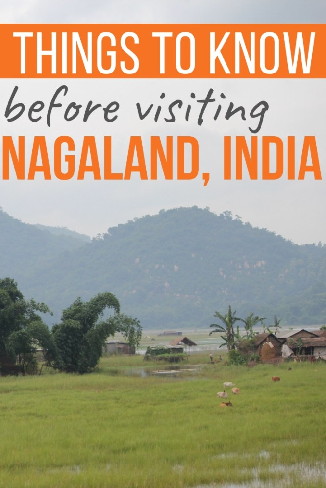 Things to Know Before Visiting Nagaland, India