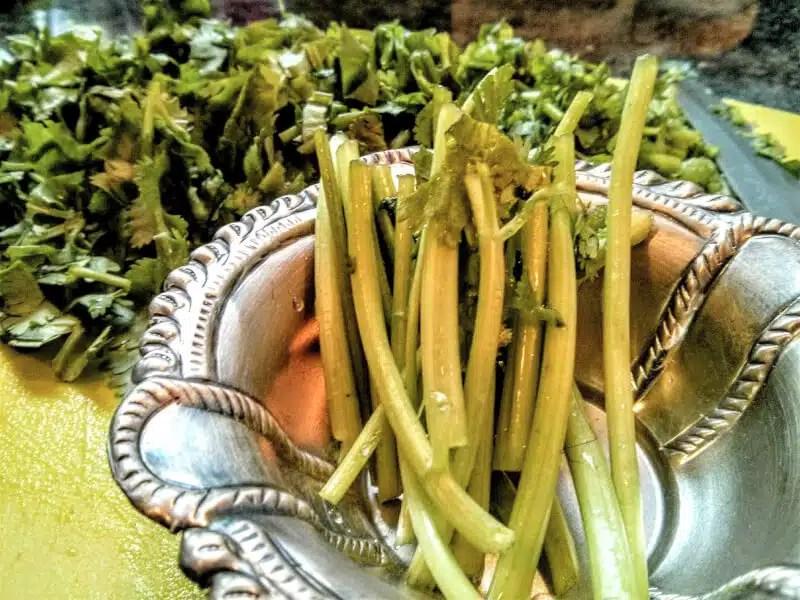 5 health benefits of cilantro | Pantry Essentials | Spice Box | Maple and Marigold