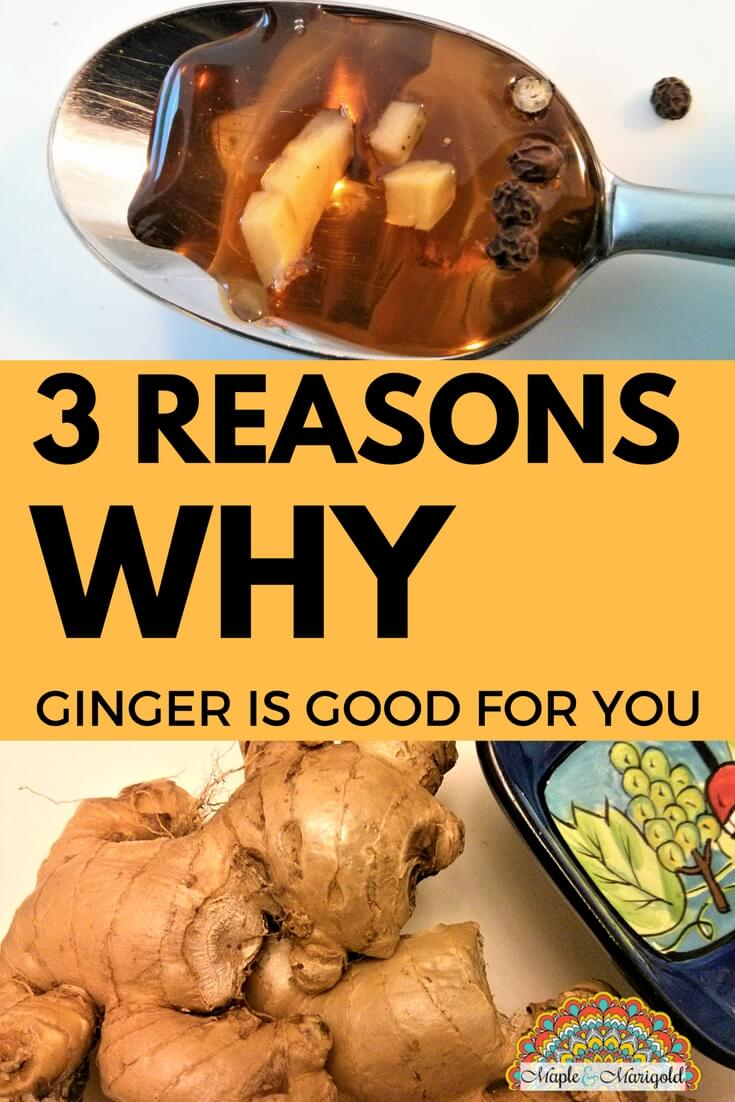 3 health benefits of ginger | Foods that heal | Ginger and it's healing benefits | Maple and Marigold