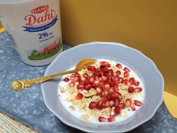 Gut Health For Kids: Longterm Habits with #HansDairy