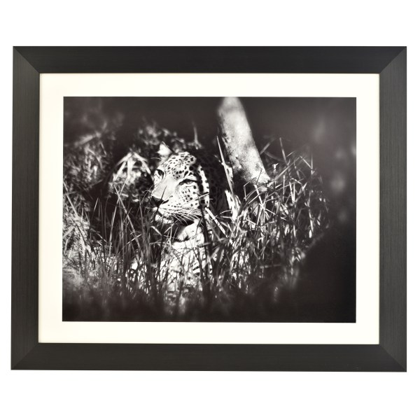 Freestyle black picture frame with mount