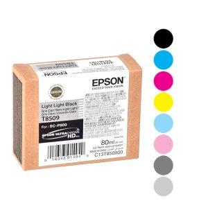 Epson Cartridges P800