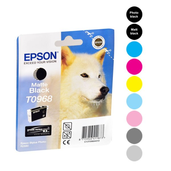 Epson Cartridges R2880