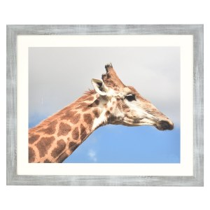Francesca grey wood frame with mount