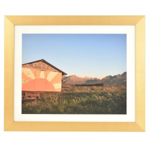 Freestyle gold picture frame with mount