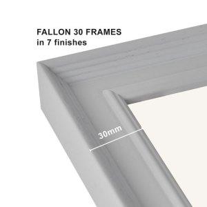 Fallon 30 Frames