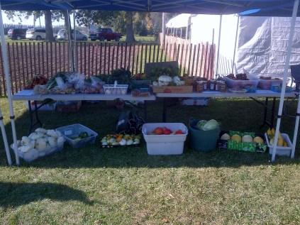 Harvest Fest Market Stand