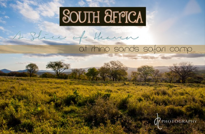 South Africa: A slice of heaven at rhino sands