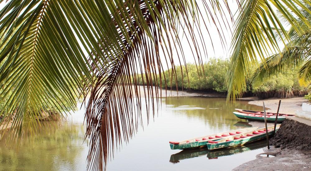 Gambia, Makasutu Cultural Forest - Map of Joy