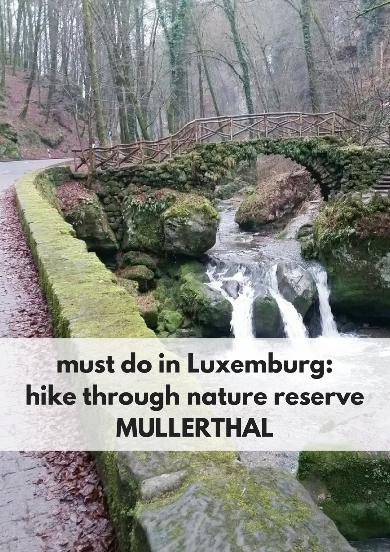 Must do in Luxemburg: hike through nature reserve Mullerthal - Map of Joy