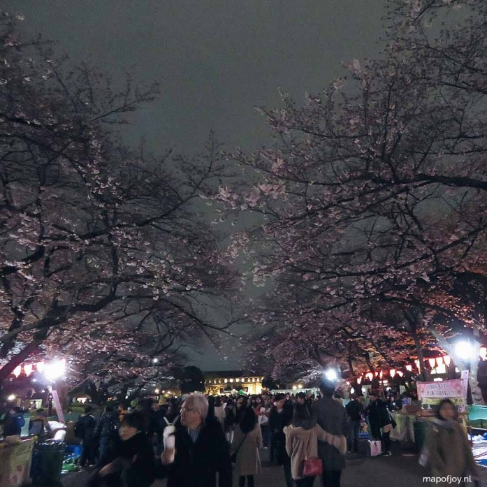Ueno Park, cherry blossom tree, Tokyo, Japan - Map of Joy