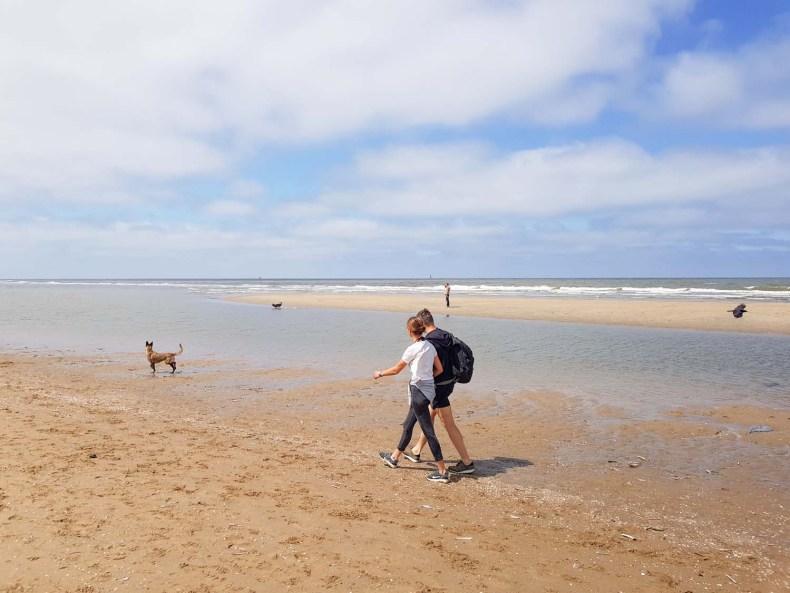 Honden strand altijd loslopen - Map of Joy
