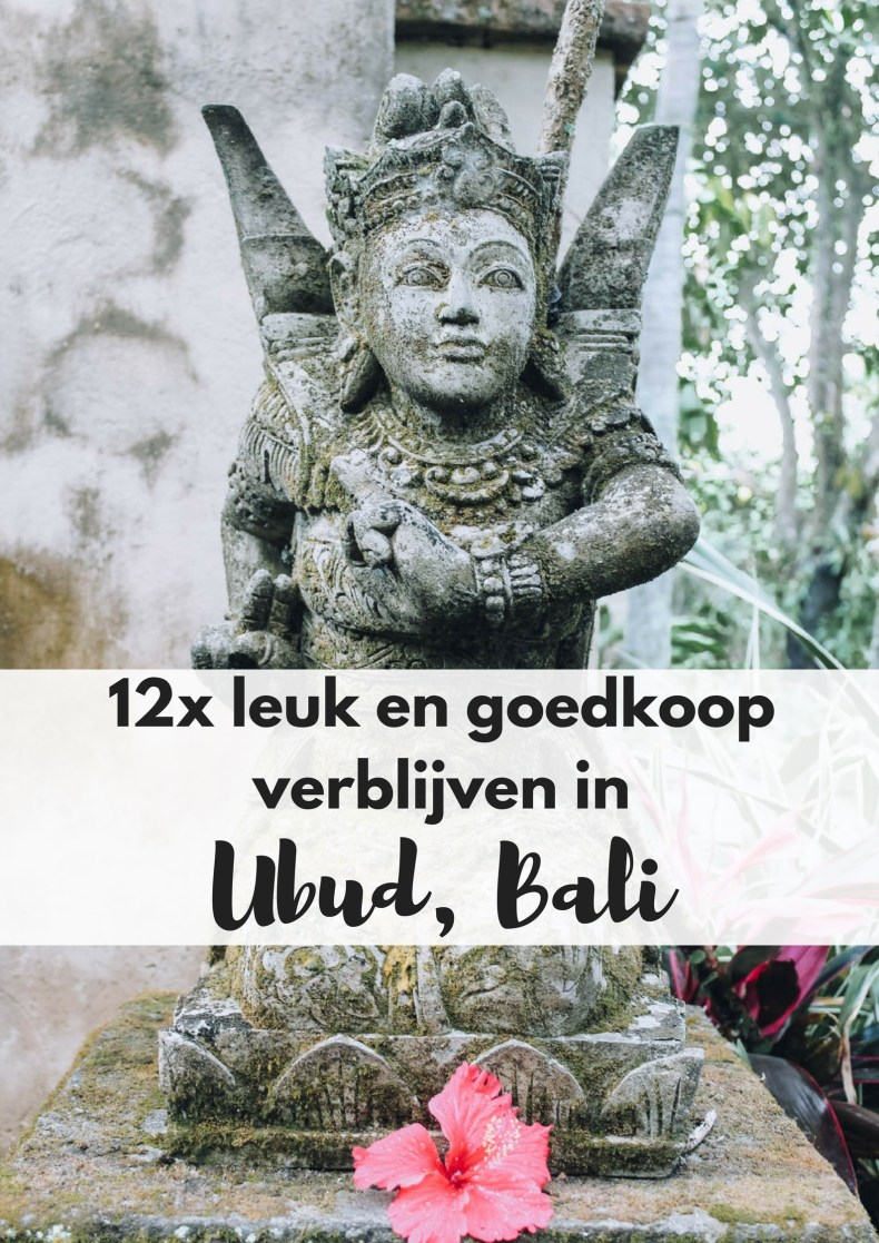 12x leuke, goedkope accommodaties in Ubud op Bali - Map of Joy