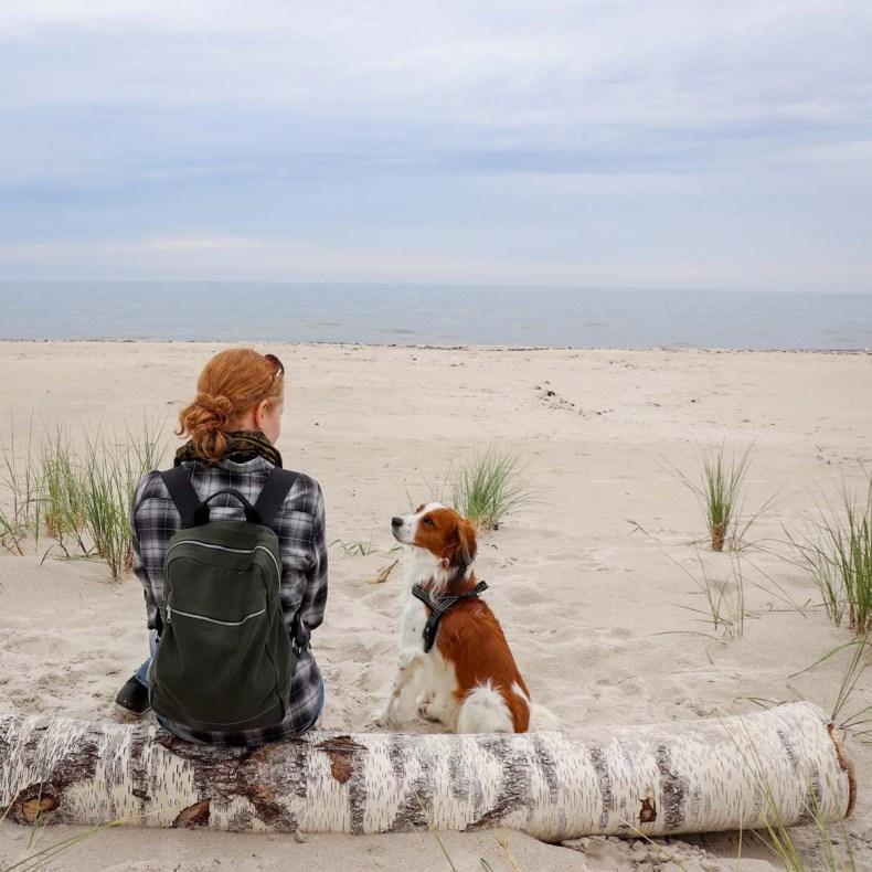 Sandhammaren, mooiste bezienswaardigheden in Skåne aan de kust [roadtrip route] - Map of Joy