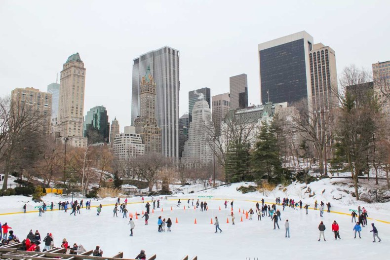 13x leuke parken in New York [en wat je er kunt doen], Central Park in winter - Map of Joy
