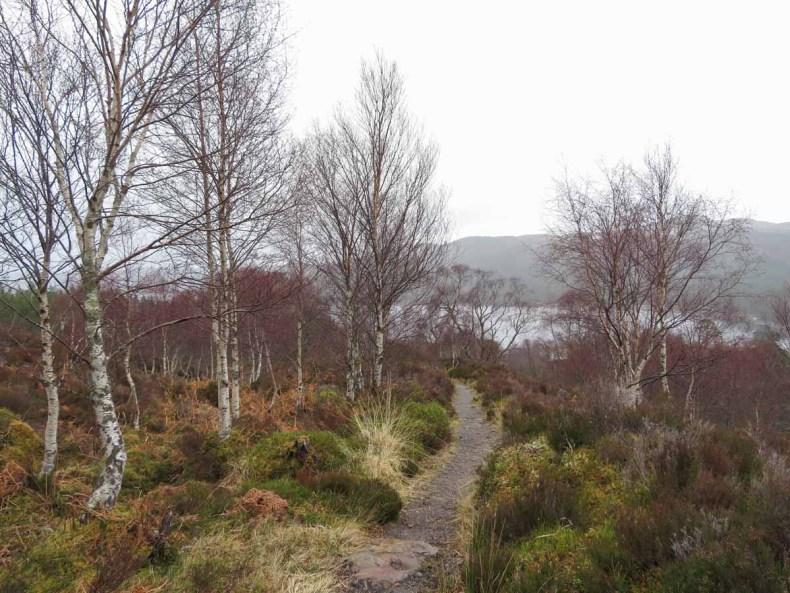 De leukste dingen om te doen in en rond Inverness, Glen Affric- Map of Joy
