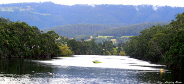 Jet boating through the Huon River.