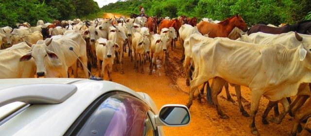 Sunday Snapshot: Driving Through Rural Bolivia