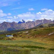 Snapshot From the Road: Denali National Park