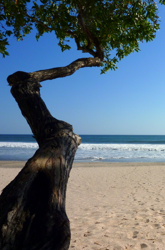 Unlike the crowded beaches of Costa Rica, Nicaragua isn't a hot spot for tourist activity, and you essentially have a huge stretch of coastline to yourself.