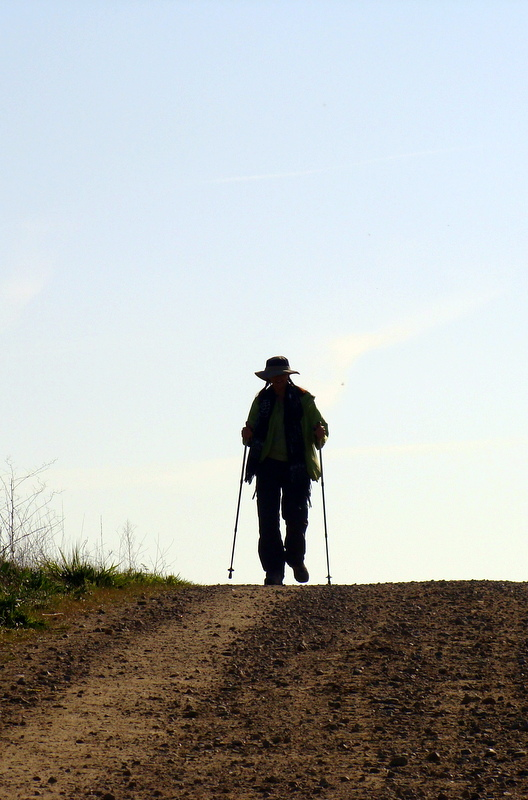 "Can one documentary inspire you to walk 500 miles? ""Walking the Camino: Six Ways to Santiago"" can."