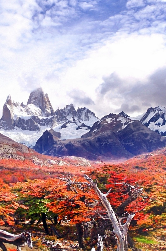 Visiting Patagonia in March and April means three things: fewer tourists, cheaper costs and exquisite autumn colours.