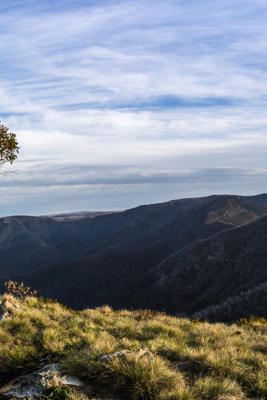 In summer, the Alpine National Park is a mecca for bush walking, mountain biking and fly fishing enthusiasts.