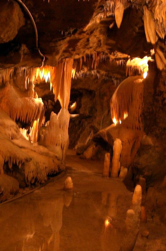 Buchan caves were formed over many millenniums by underground rivers cutting through the limestone.