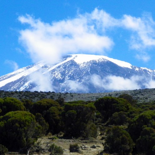 Dominating the landscape like no other mountain, both iconic and instantly recognizable, Kilimanjaro in Tanzania is the highest peak in Africa and the highest free-standing mountain in the world.