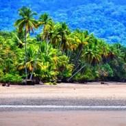 Things to do in Uvita, Costa Rica