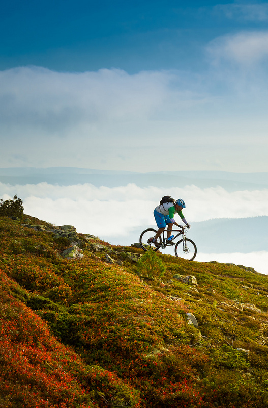 Biking at Trysil