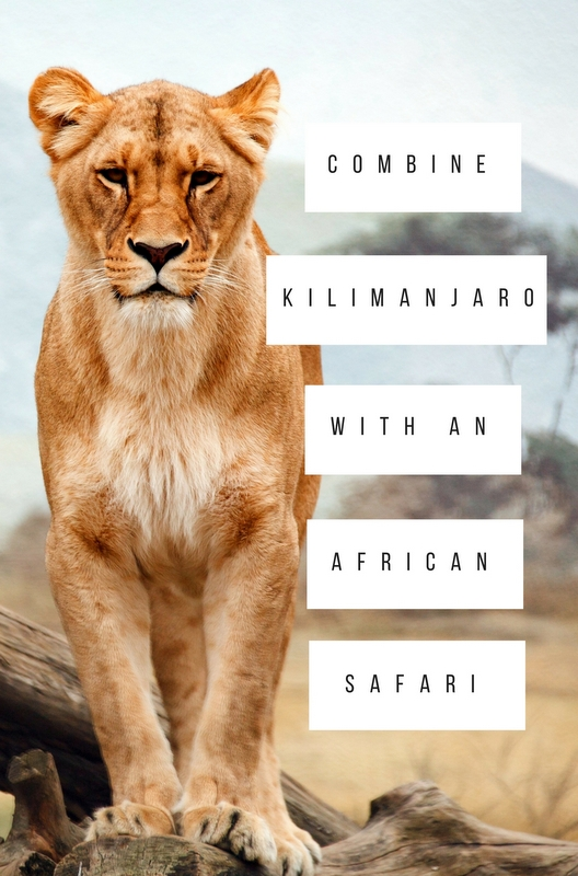 There are many decisions to make when planning your Kilimanjaro climb, but the best you'll make will be to combine it with an African safari.