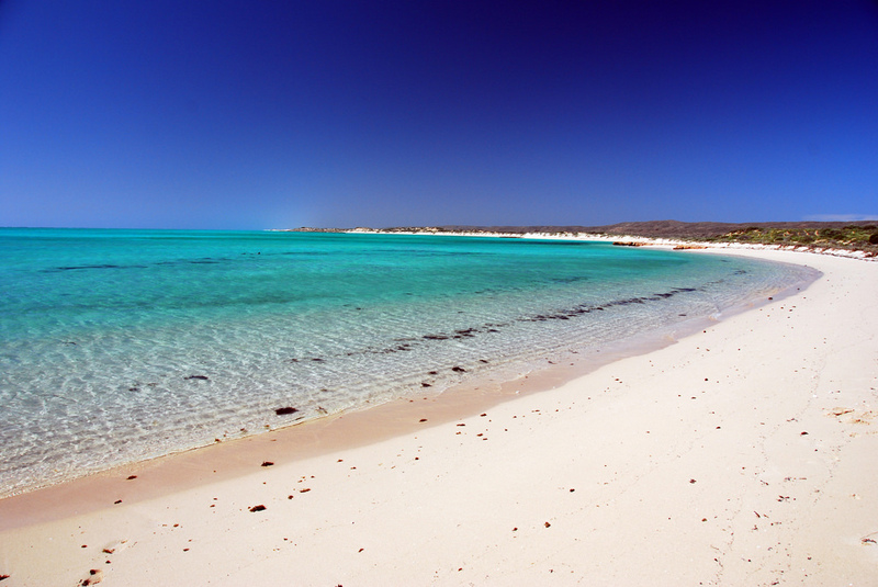 Strap your snorkel on and get out there! The waters of Turquoise Bay (not too far from Exmouth) is one of the few points along the Western Australian coast where Ningaloo Reef is just an arm's reach away.