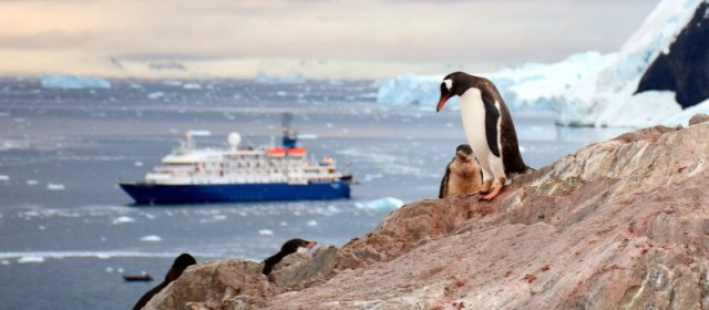Why This Should Be The Year You Visit Antarctica