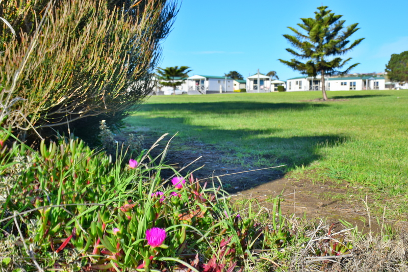Devonport discovery parks review