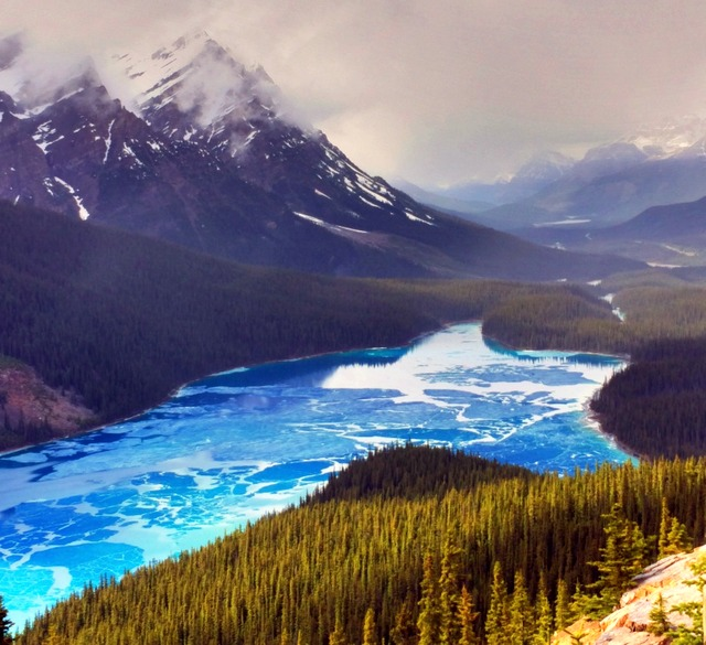 You hike up almost 1000 meters to the top of the summit to see the most beautiful lake you will ever witness in your life – Peyto Lake.