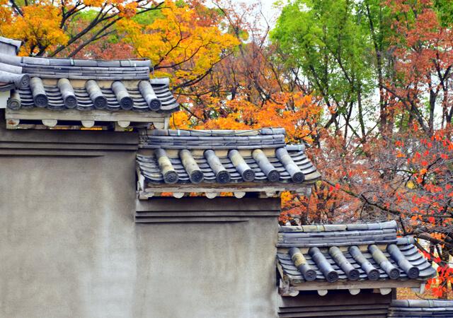 Kansai during fall