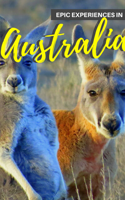 When it comes to things to do in Australia there are many beautiful places - this is an Australia bucketlist. Click through!