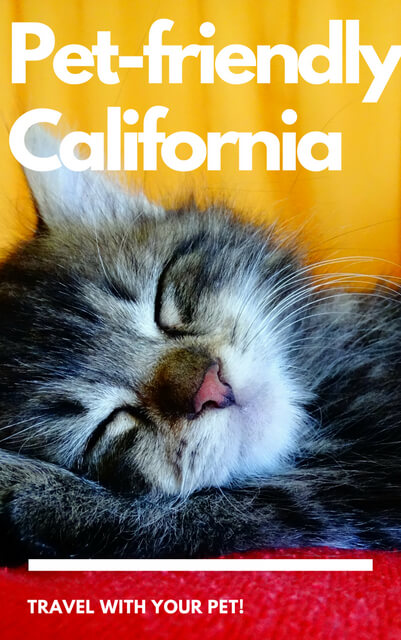 There are many destinations that are pet-friendly, and one of those is California. Plan to visit one of the States following destinations & you'll be fine!