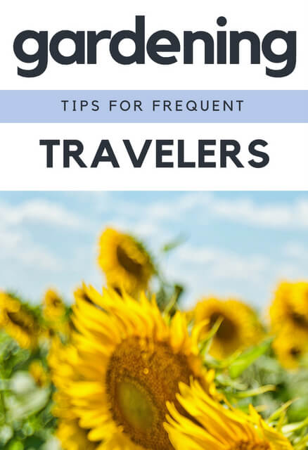 Can frequent travelers run a successful garden? Absolutely! The following tips are for travelers who love their garden so you can succeed at them both.