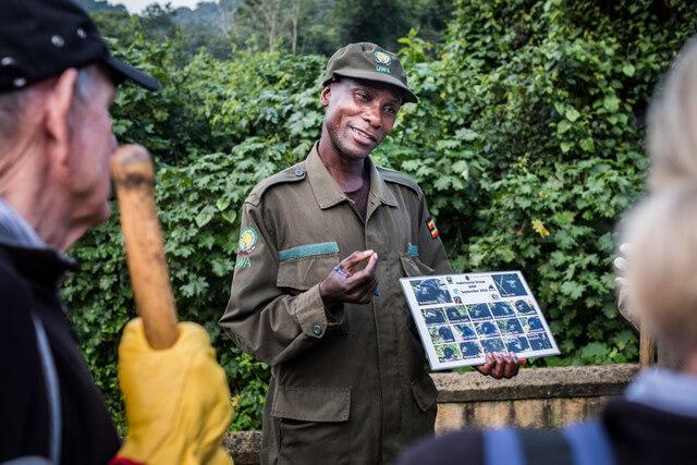 gorilla tracking tour Uganda