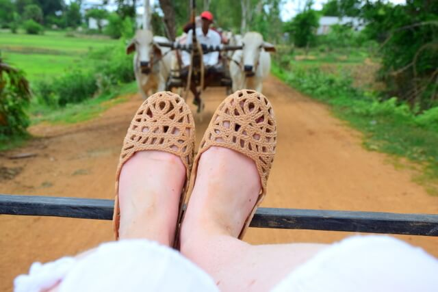 Mox perfect travel shoe review ox cart