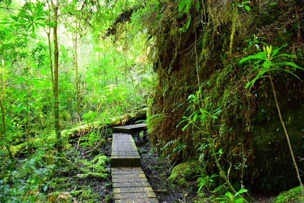 Corinna Western Tasmania