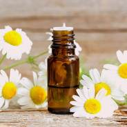 The Benefits of Using Roman Chamomile Essential Oil for Travelers