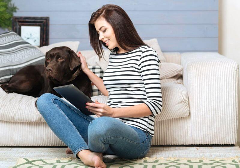 Pet dog housesitting RF