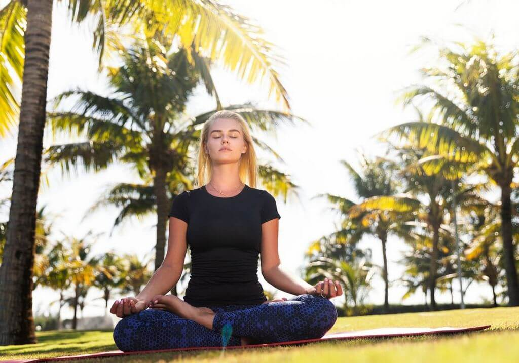 Yoga palm trees RF
