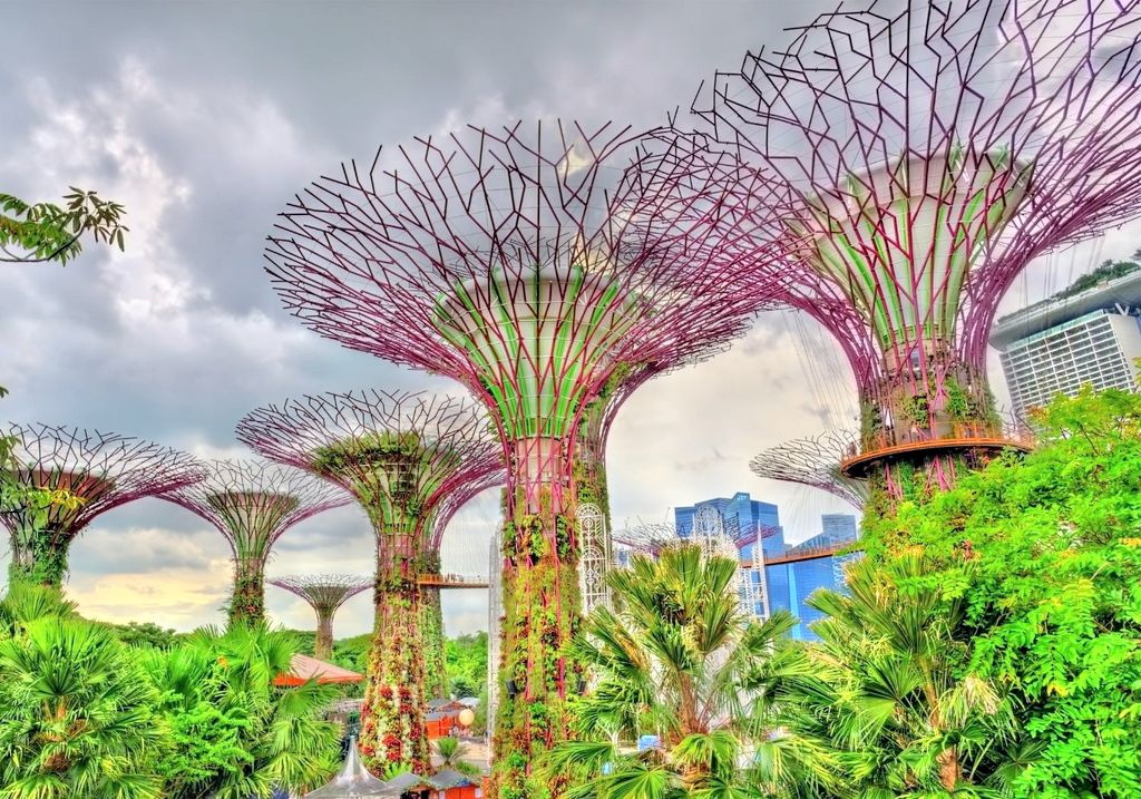 Gardens by the Bay Singapore RF
