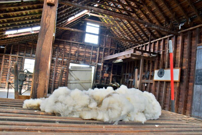 Wool Shed Rathmore Sheep Property Tasmania