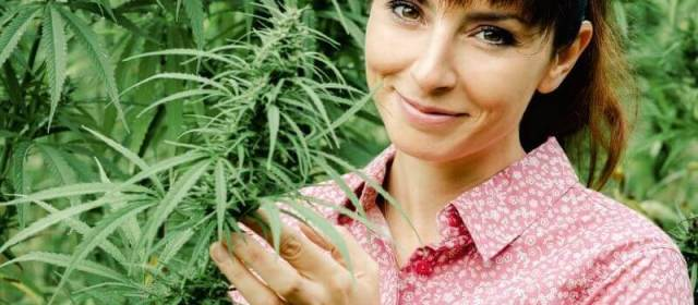 Things to Know when Buying and Traveling with Hemp Flower